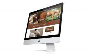 Horse Drinker iMac