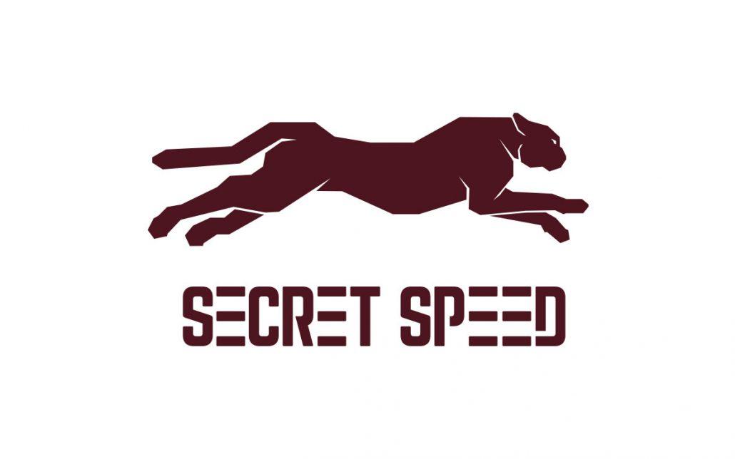 Secret Speed Unused Logo Design